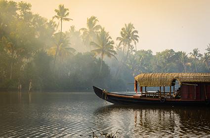 La magia de Kerala, Munnar y las playas de Kovalam