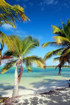 Maldivas en el hotel Eriyadu island resort 3*, en Pension completa
