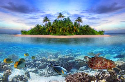 Memorias de Sri Lanka y Maldivas