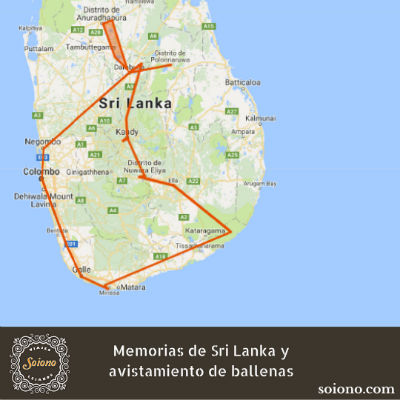 Memorias de Sri Lanka y avistamiento de ballenas
