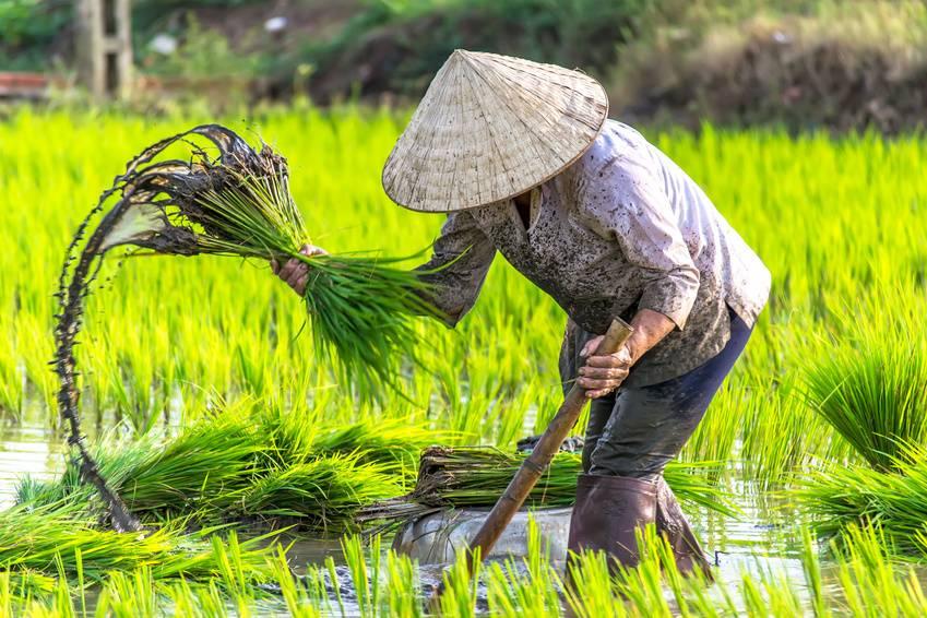 Viaje a Vietnam en Semana Santa 2019