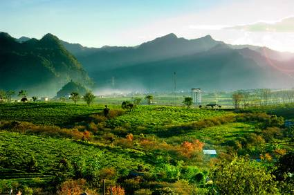 Viaje al Norte de Vietnam y Koh Samui